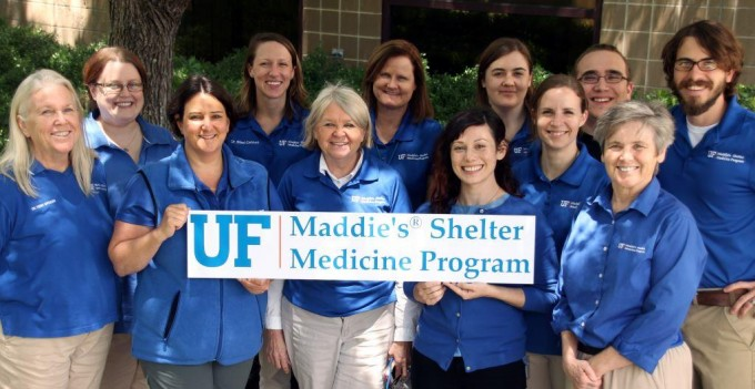 The Maddie's Shelter Medicine Program team
