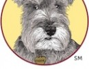 Free Webcast: <i>Everything Shelters Need to Know About Canine Distemper</i>